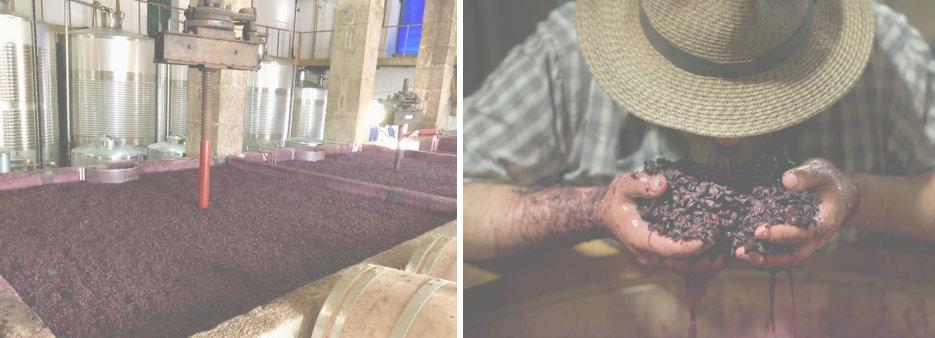 Elaboración del vino Por qué algunos Vinos son tan Caros