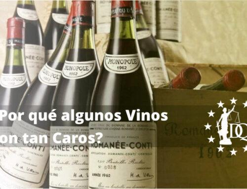 ¿Por qué algunos Vinos son tan Caros? | Master en Enología Online