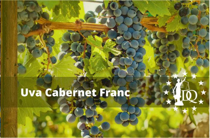 Características Vino Cabernet Franc